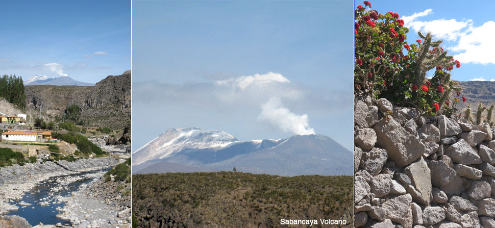 termals, volcano and cactus