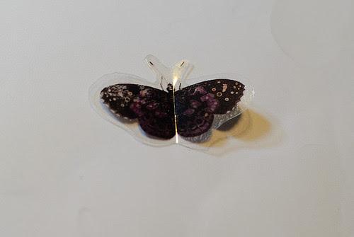 technique - butterflies (3 of 3)