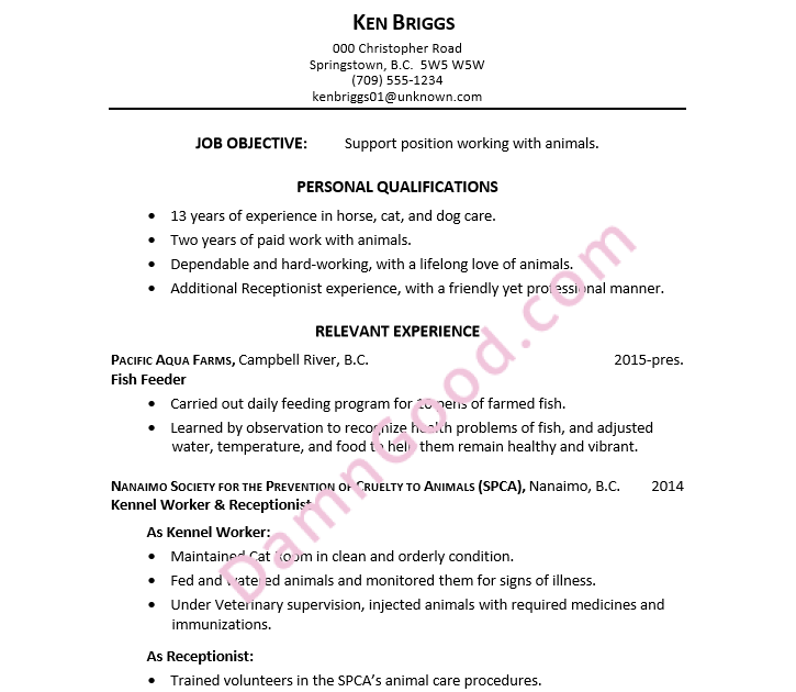animal care resume examples no experience