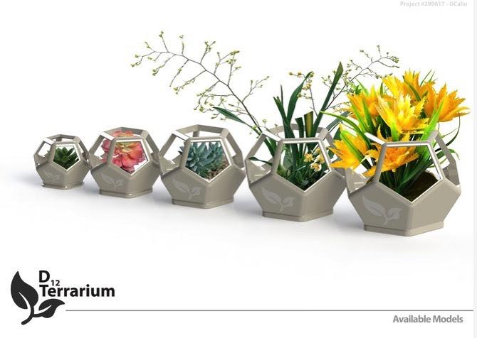 3D Printed D12 Terrarium by Gabriel Calin Pinshape