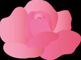 可愛いバラ薔薇のイラスト 無料イラストフリー素材