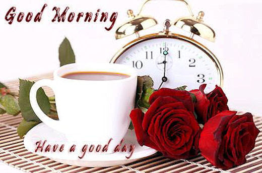 Good Morning Have A Good Day Pictures Photos And Images For