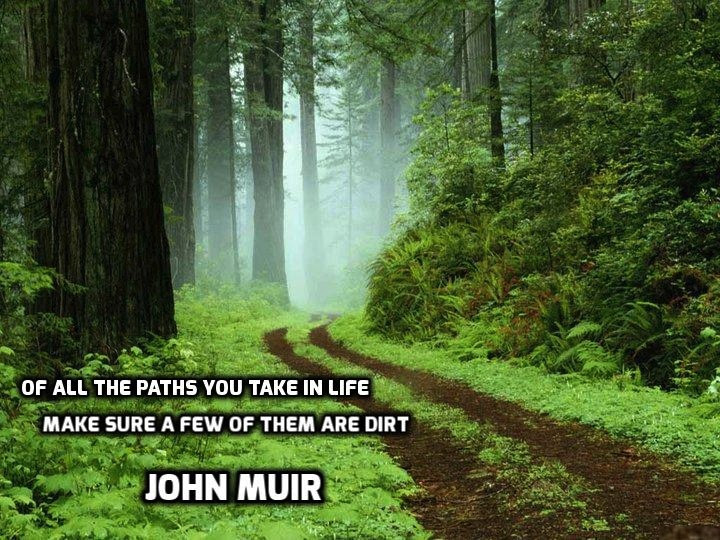 Of All The Paths You Take In Life John Muir 720x540 Quotesporn