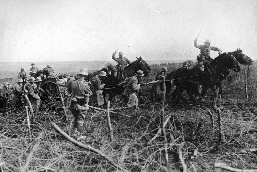 Os animais também lutaram na Primeira Guerra Mundial 29