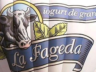 El logotip de La Fageda en el globus de la fundació.
