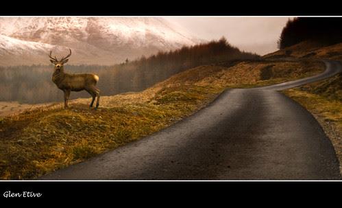 Glen Etive por Craig Robertson