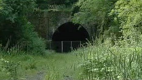 Shillamill Tunnel, near Tavistock