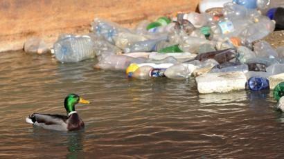 Plastik Merkuri Dan Timbal Merupakan Bahan Pencemar ...