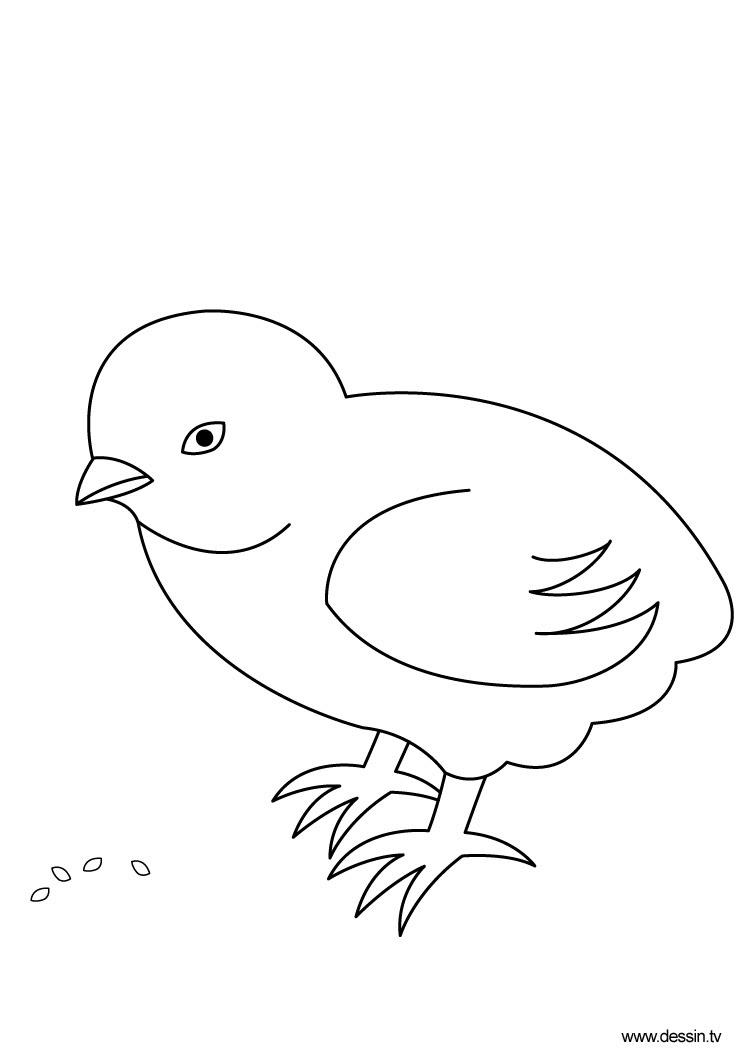 Sélection De Coloriage Poussin à Imprimer Sur Laguerchecom Page 2