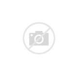 Pictures of Black Pole Beans
