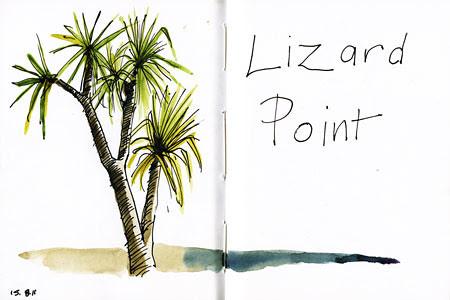 lizard_point450px