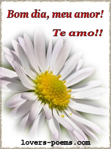 Mensagens De Bom Dia Meu Amor Gifs Com Lindas Frases De Bom Dia