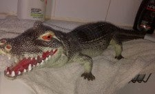 Woman tricked into thinking there was an alligator in her bathtub