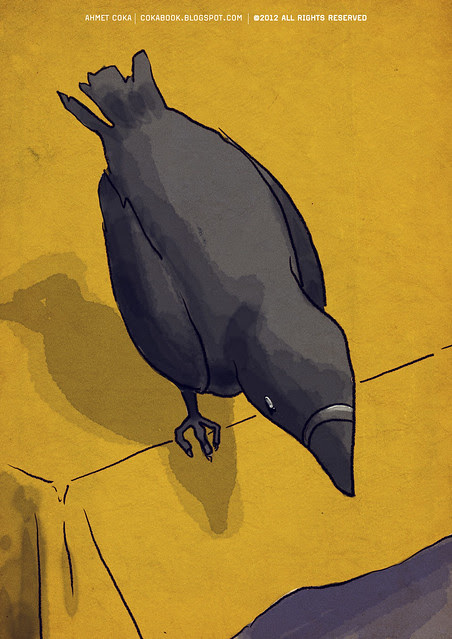 crow on the table
