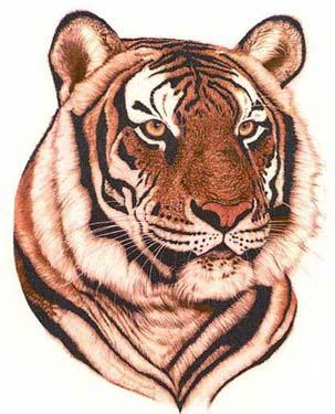 Beautiful Tiger Head Tattoo Design