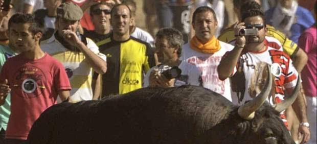 Muere el Toro de la Vega