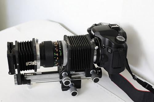40D+Canon duplicator