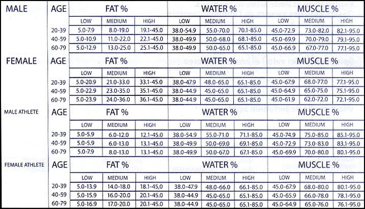 waist measurement for body fat percentage