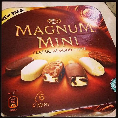 magnum mini sg