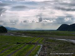 西瓜田與龜山島