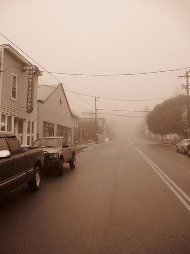 Misty Morning in Monterey
