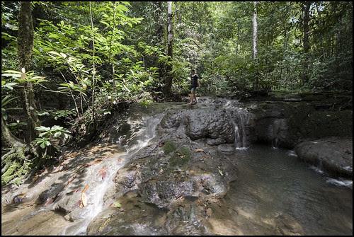 At Sa Nang Manora Forest Park