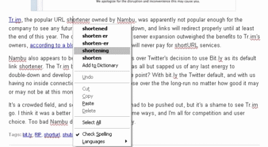 Firefox Spell Checking Website