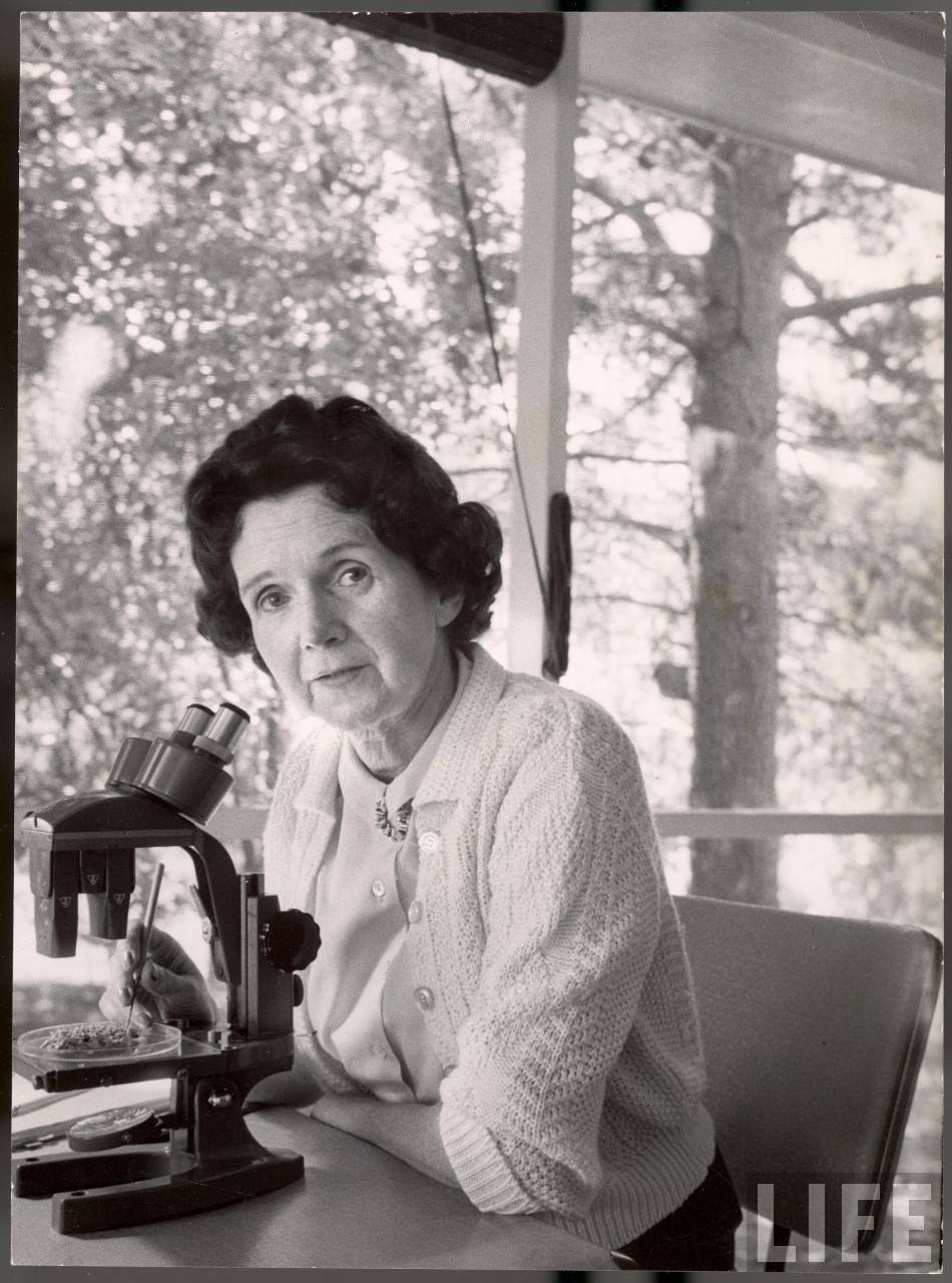 the life and books of rachel louise carson A biography of rachel carson, environmentalist writer whose book silent spring helped as: rachel louise carson rachel carson of life: rachel carson at.