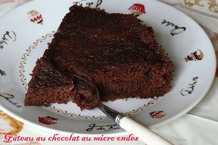 g_teau_au_chocolat_au_micro_ondes_copie