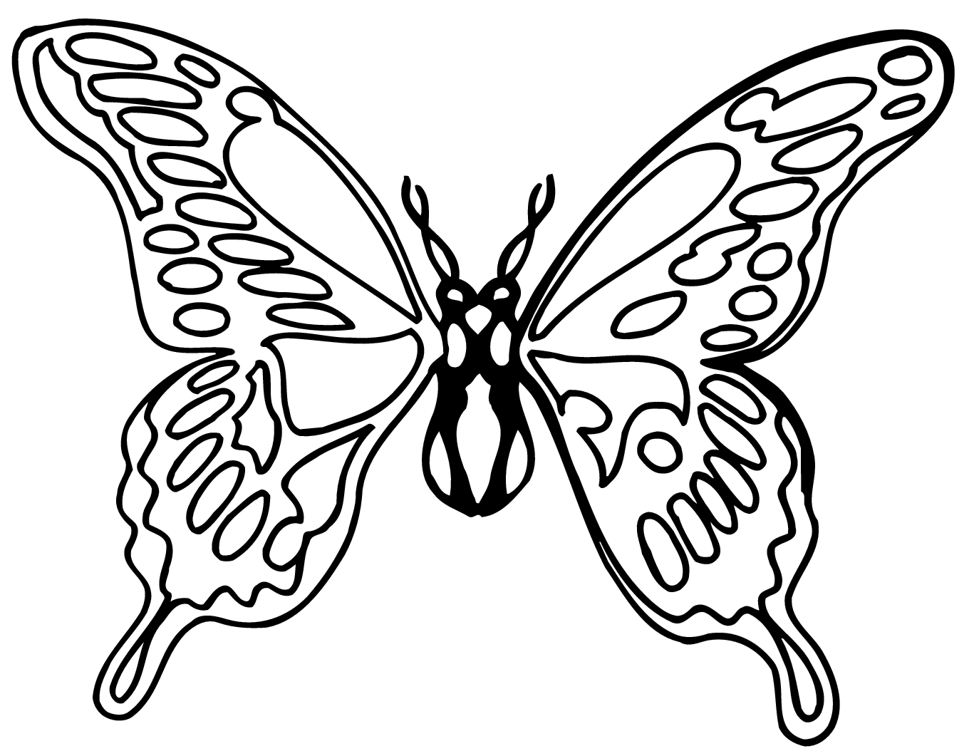 Free Black And White Butterflies Pictures Download Free Clip Art