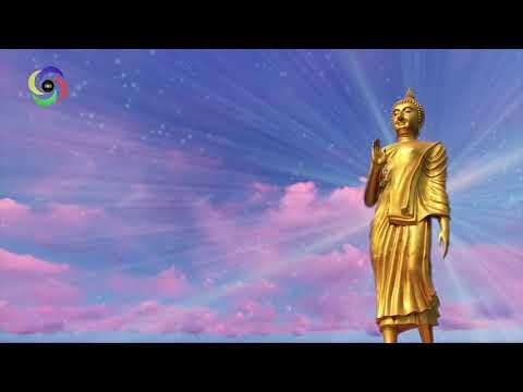 Zen Meditation Music ✿ Relaxing Music ✿ Relaxing Music ✿ Anxiety & Stress ✿ Body Mind Relax Music