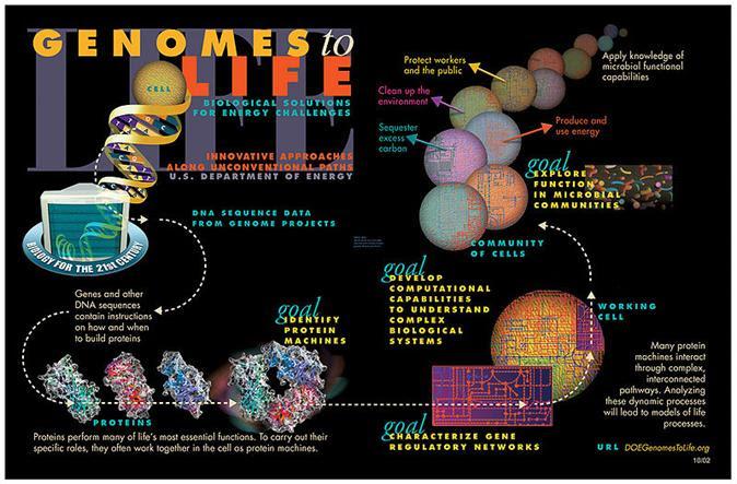 File: Genomics GTL Pictorial Program.jpg