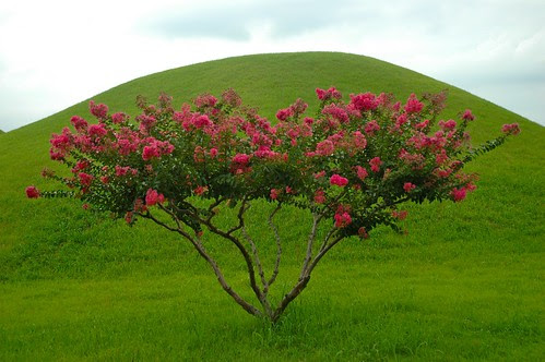 Tumuli Park 03: Burial mounds, South Korea