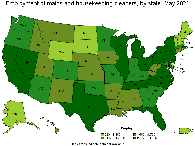 Maids and Housekeeping Cleaners