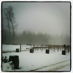 Zorvino Vineyards #newhampshire #wine #winery #winter