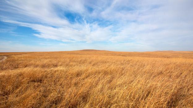 Prairie (Credit: Thinkstock)
