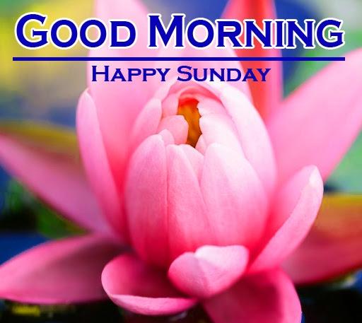 Sunday Good Morning Images 7 1