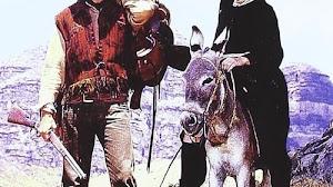 Ver Dos Mulas Y Una Mujer Película Completa En 1970 Online Gratis Philmaes