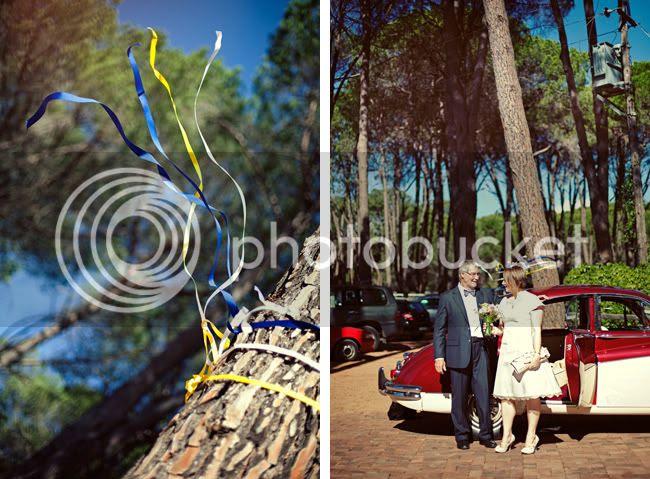 http://i892.photobucket.com/albums/ac125/lovemademedoit/PA_ForestWedding_006.jpg?t=1300783342