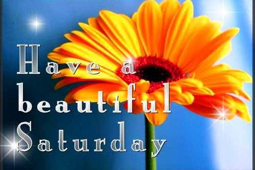 84 Saturday Good Morning Quotes Pictures Greetings Messhelper