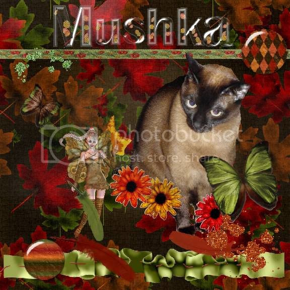 Siamese Cat,Autumn,Fairies