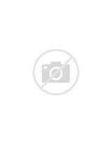 Pictures of Summer Camp Activities