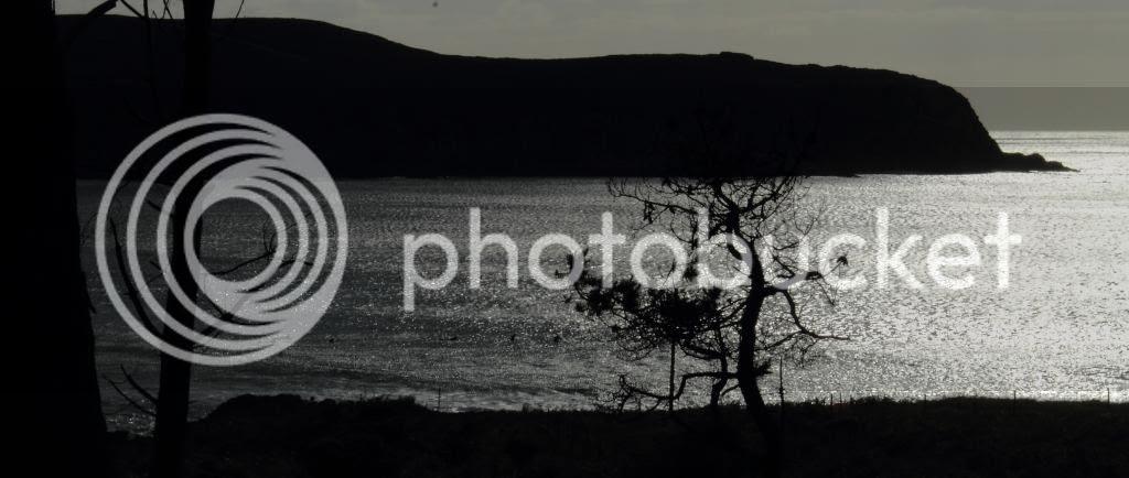 photo 2-9.jpg