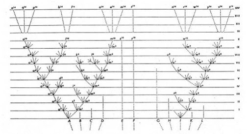 File:Darwin's tree of life.jpg