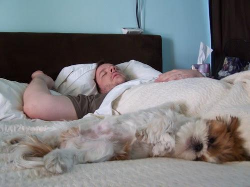 Jim and Wonton lounging