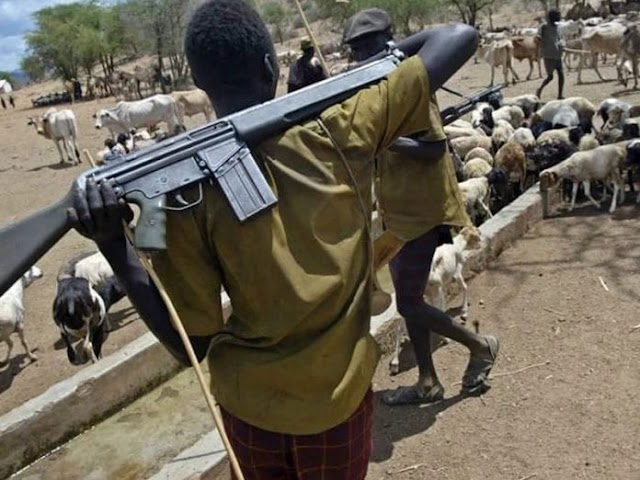 Herdsmen kill Asaba FMC doctor, abduct two of his friends