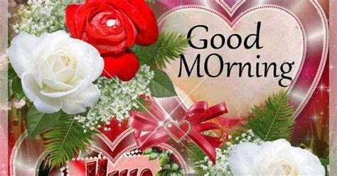 Red and White Rose Wishes Cards for Good Morning