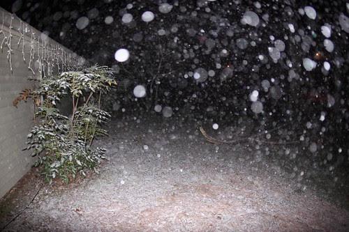 Snow 10:30PM