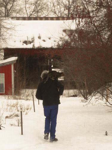 farmette winter-15.jpg