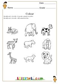 Domestic Animals Worksheet For Kindergarten Free Downloadable Domestic Animals Worksheets For Kids Ira Parenting Animal Worksheets Will Get Your Kindergartener Excited About Learning Kilomaro Joan